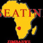 SEATINI Logo